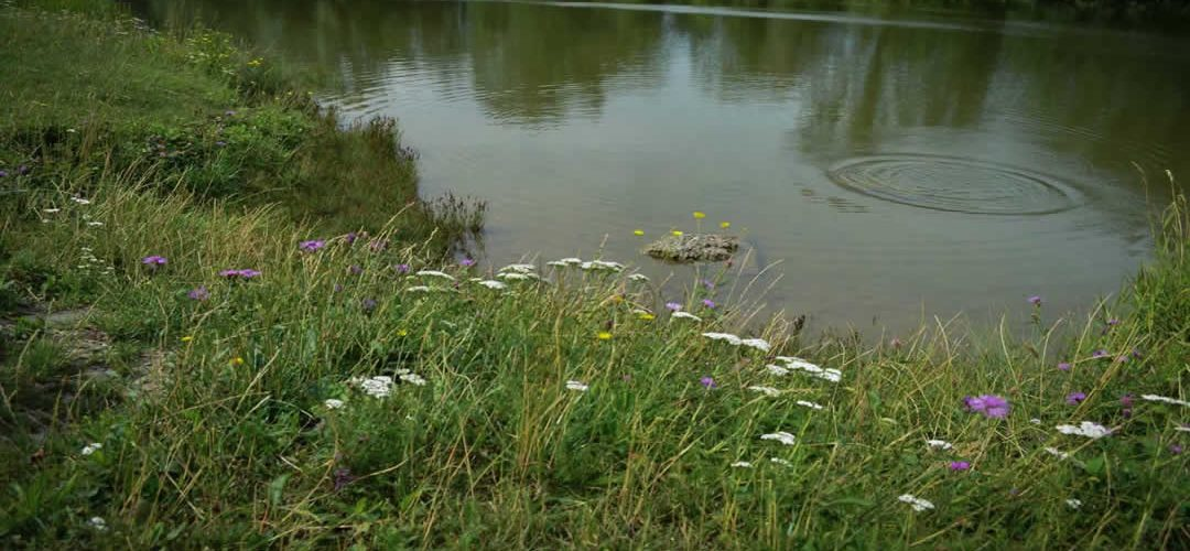 Peak O2 Pond Lake and Septic Solutions